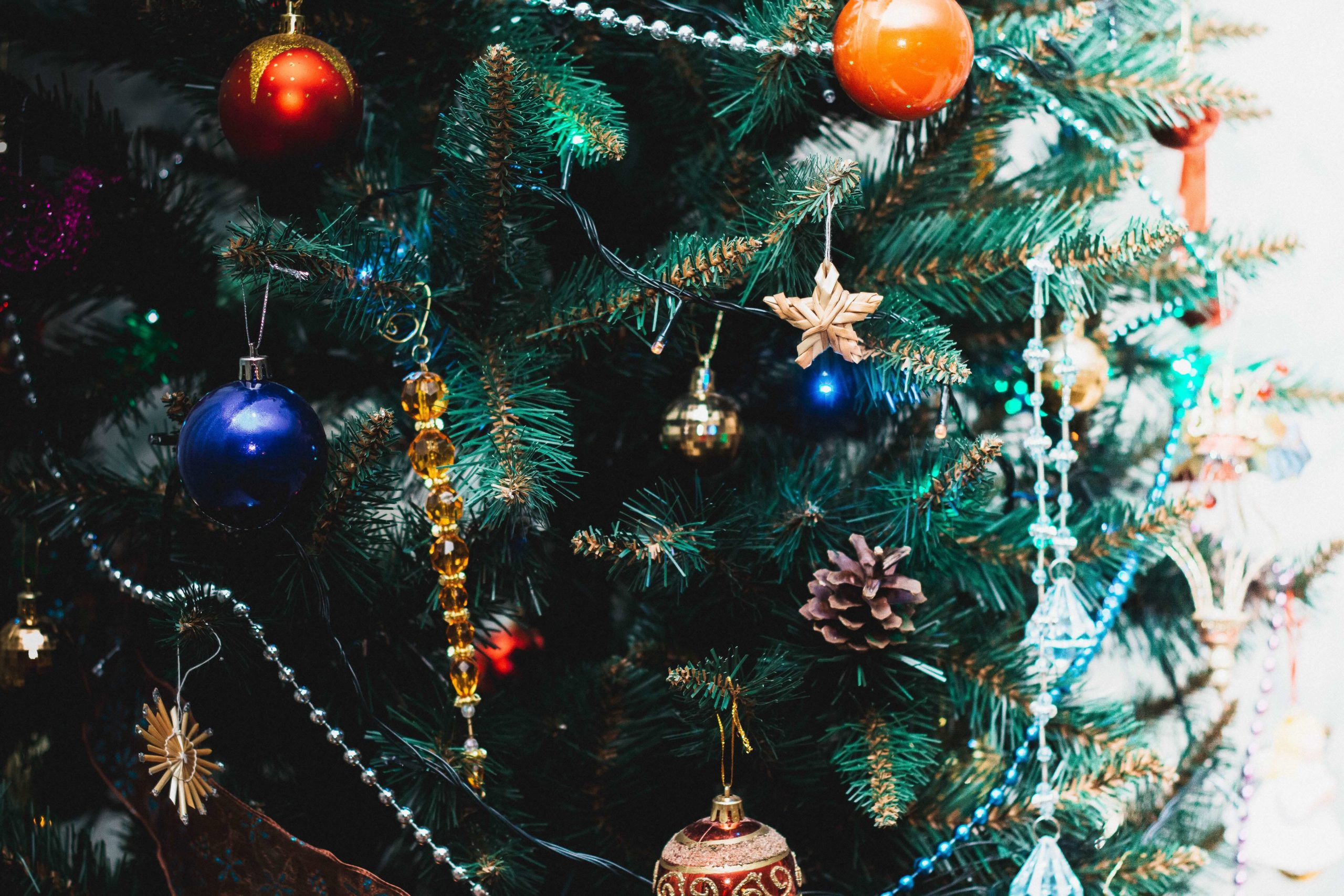 Blog - Cutting Edge Tree Professionals - Getting your christmas tree