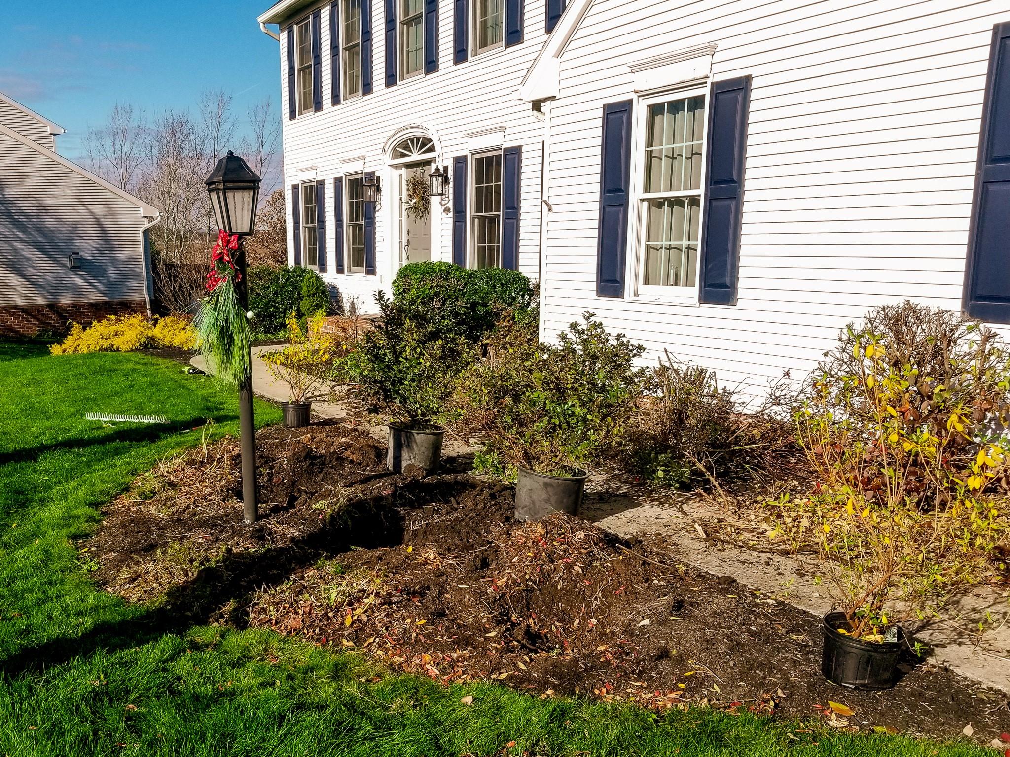 Blog - Cutting Edge Tree Professionals - Winter Planting
