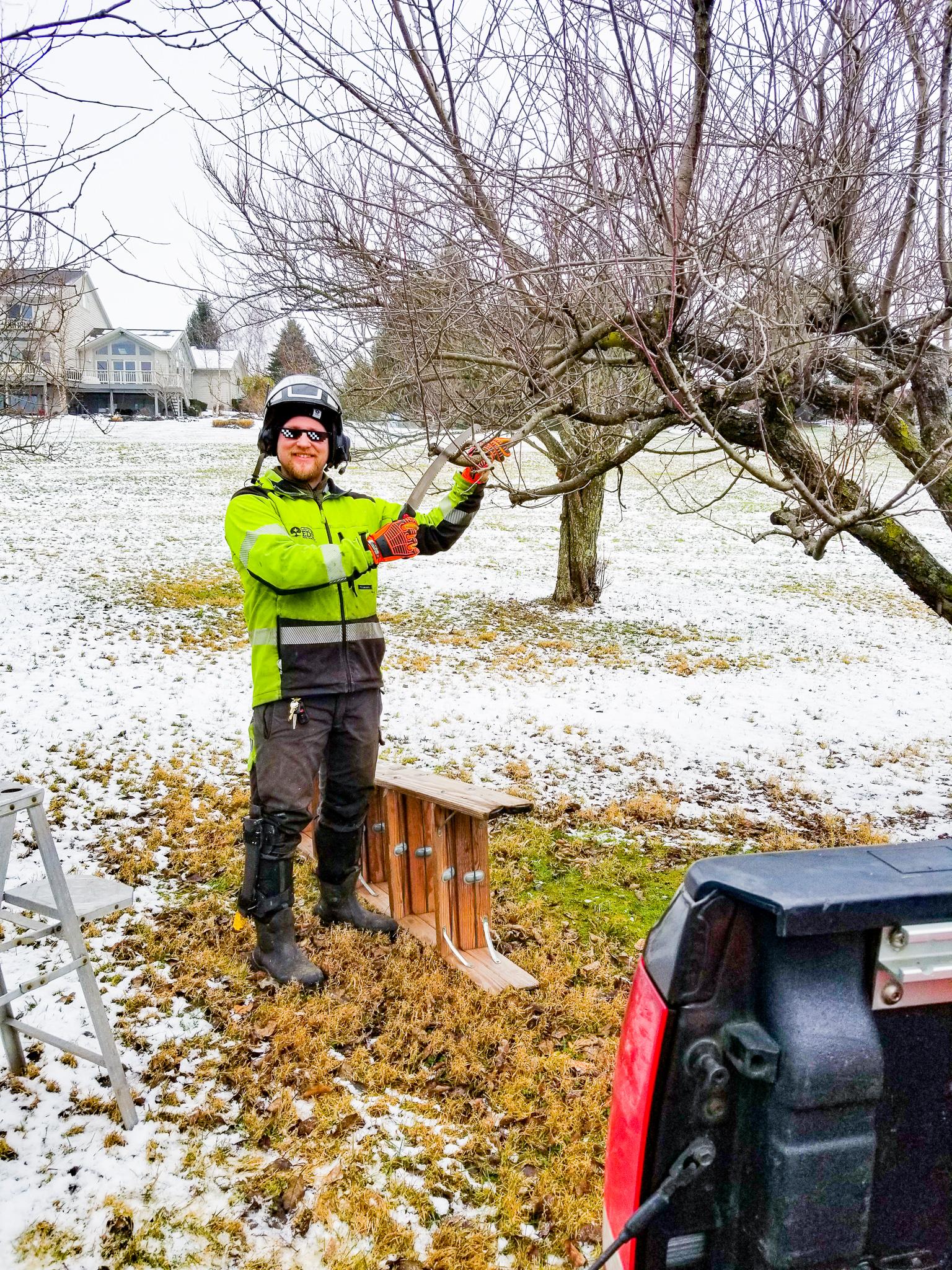 Cutting Edge Tree Professionals _ Blog _ Winter Tree Pruning