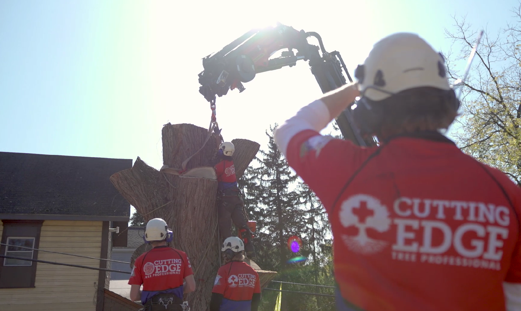 Crew Tying Tree